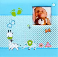 Fotoalbum 98.411.07 Baby Moments