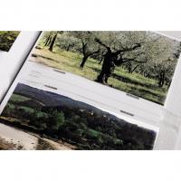 Hama album memo HAVAJ 10x15/200, popisové štítky