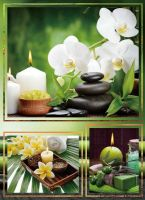 Fotoalbum B-35200 Candle 1 orchidej